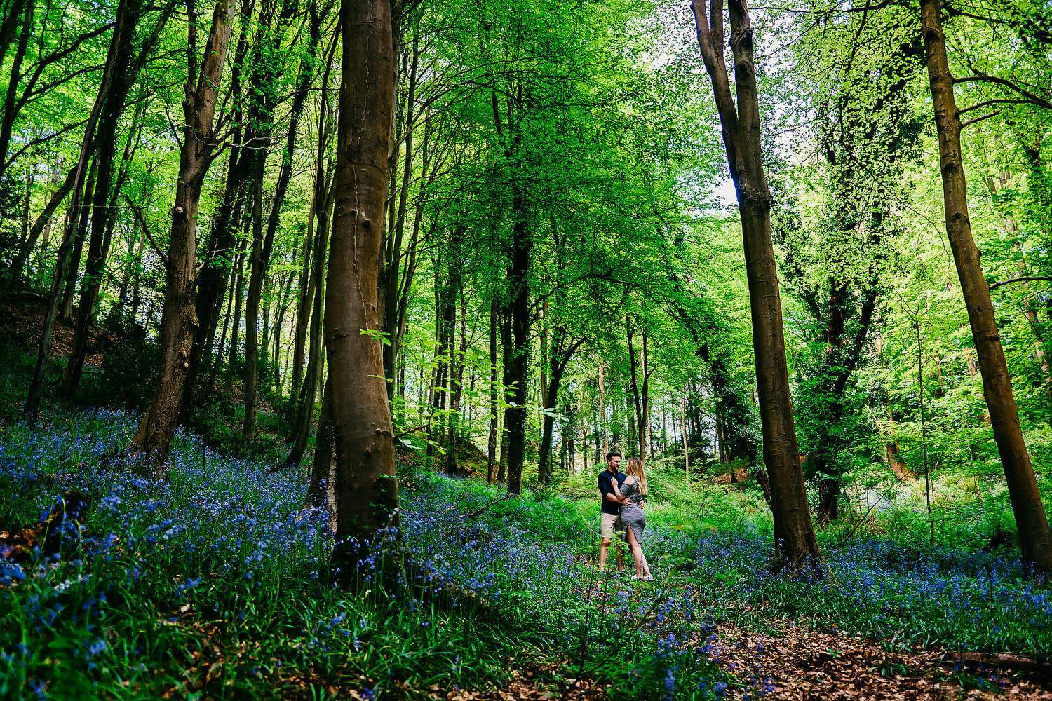 Soon to be bride and groom kissing under the trees amongst the bluebells of leigh woods in bristol