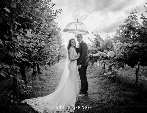 Cerys and Dans Llanerch Vineyard Summer Wedding